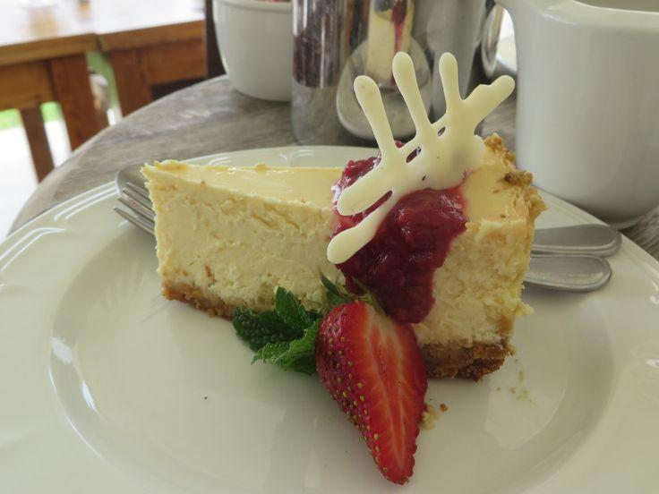 Yummy cheesecake! #recipes #cheesecake #dessert