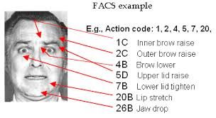 Image result for facial action coding system