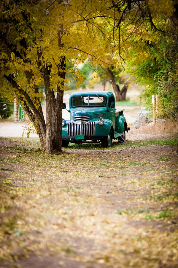 1000 Images About 1946 Chevy Truck On Pinterest Chevy