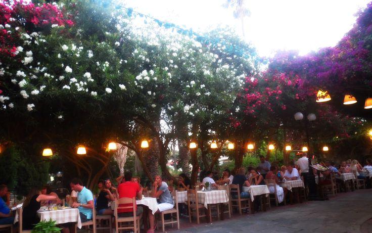 Kos. Greece. Holiday 2015