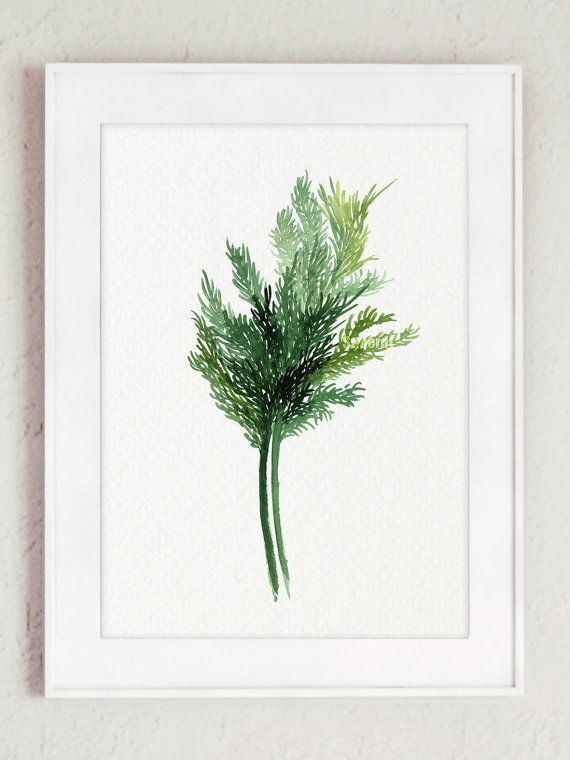 Dill Kitchen decor Watercolor Art print Herbs by ColorWatercolor #dill #minimalist #painting