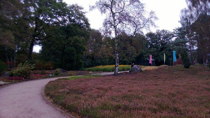 Rhododendron Park, Bremen