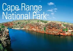 Cape Range National Park - Exmouth Visitor Centre, Exmouth Accommodation, Exmouth Western Australia, Ningaloo Reef, Exmouth Tourism, Exmouth Accommodation, Exmouth Tours, Exmouth Events, Exmouth Activities, Hire, Car Hire, Businesses, Ningaloo, Ningaloo Reef, Snorkel Ningaloo Reef, Coral Bay