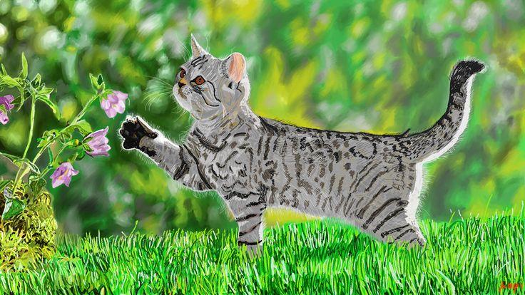 Cat by Mixmax3d.deviantart.com on @DeviantArt #cat #digital #digitalpaint #digitalpainting #light #photo #study #mixmax3d
