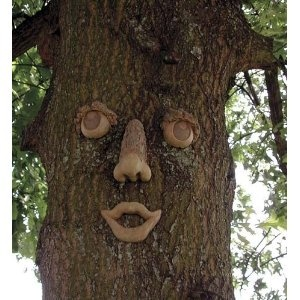 9 Best Tree Faces Images On Pinterest Tree Faces Garden Art And