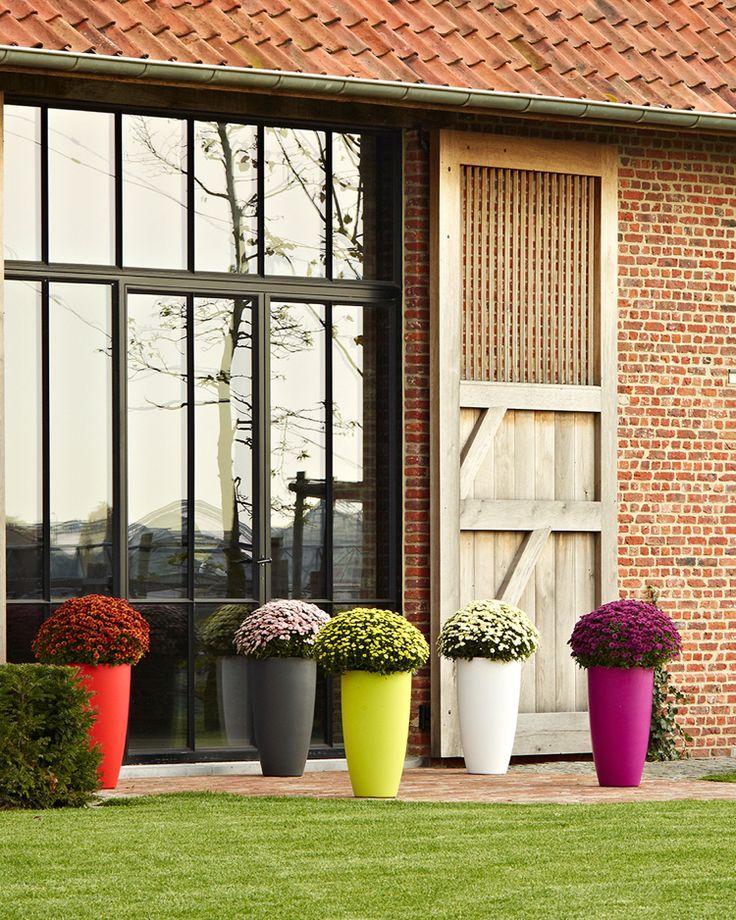 bunte gartendeko hohe pflanzk bel color blocking garden. Black Bedroom Furniture Sets. Home Design Ideas