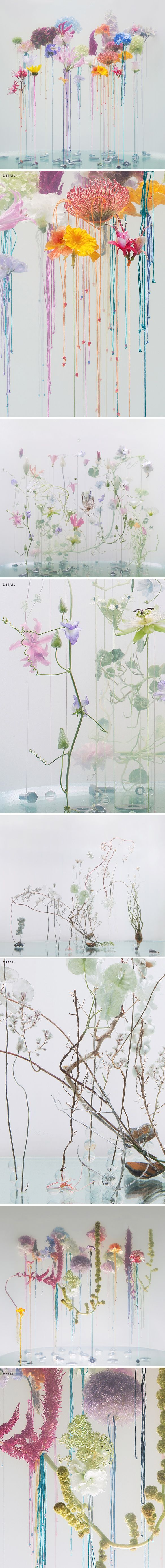 """underwater ballet"" - a new series by anne ten donkelaar <3"