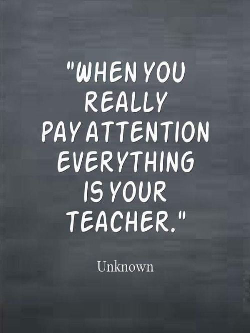 When the students ready the teacher appears in all forms, places, ways... www.liberatingdivineconsciousness.com