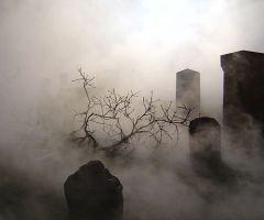 Graveyard St. Andrews on Flickr - Photo Sharing!