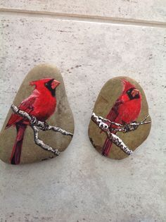 Cardinals on a rock!