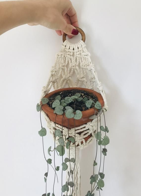 A hand-made macrame wall planthanger made of cotton rope. Sensational to decorate walls, ceilings, windows, various interiors in this restaurant, office or just your favorite corner to relax ... Macrame planter is made in the form of a basket, ideal for long hanging plants to hang them under the