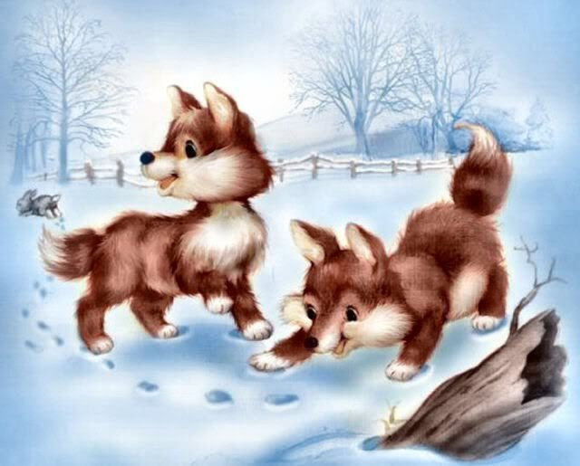 baby foxes- this reminds me of my grandma's place<3