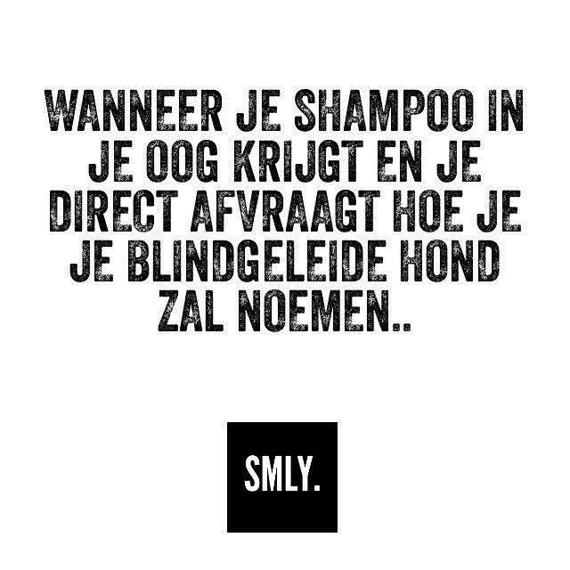 Wanneer je shampoo in je oog krijgt een gelijk zit te bedenken hoe je je blindegeleide hond zal noemen