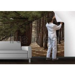η φωτογραφία μου σε ταπετσαρία - ψηφιακή ταπετσαρία, φωτογραφία σε καμβά, αυτοκόλλητα τοίχου, πίνακες ζωγραφικής, πόστερ
