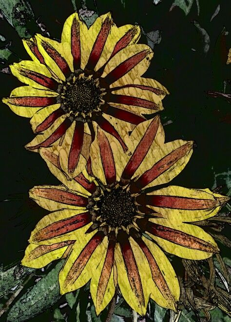 Red and yellow flowers sketched.