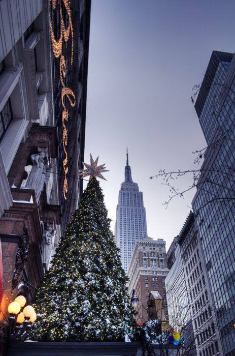 My personal dream is to go here for Christmas one year in good old NYC - Holiday Season in Harold Square with Empire State looking on, New York City