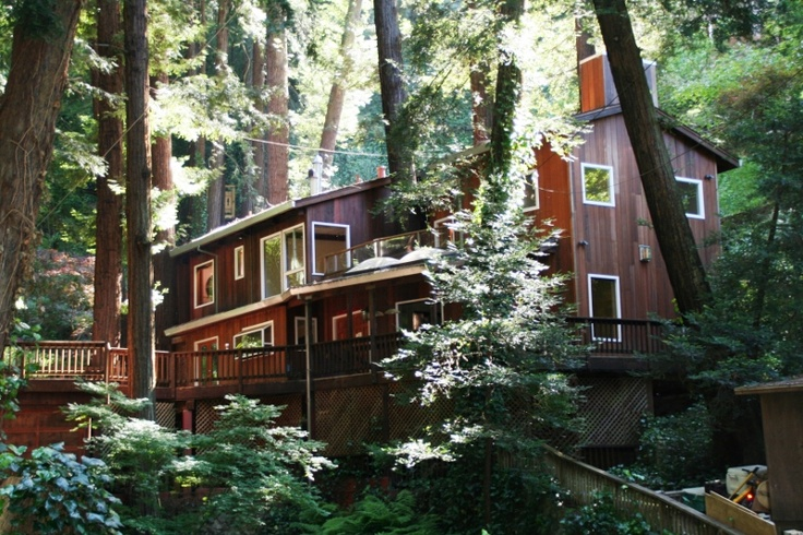 92 best images about 94941 mill valley california on for Mill valley cabins