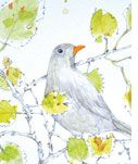 Sarah Gabriel | Lauriston Press | Artist Studio & Gallery | Kyneton & Armadale Victoria