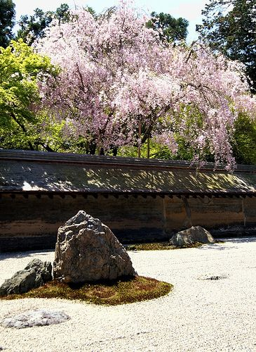 The Rock Garden / Ryouan-ji temple #japan #kyoto  http://www.japanesegardens.jp/gardens/famous/000039.php
