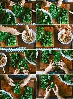 Swiss chard rolls with rice and beef (or whatever else you want to stuff them with)