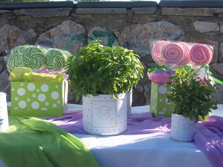 Βάπτιση διακόσμηση στο τραπέζι των γλυκών με γλειφιτζούρια σε δύο χρώματα και βασιλικό φυτό σε γλαστράκι.