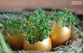 Da es in einer Woche soweit ist und Ostern vor der Tür steht, zeige ich euch heute ein einfaches DIY für eure Osterdeko oder als kleines Mi...