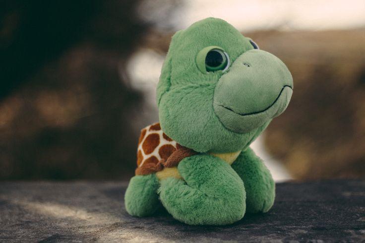 #Plush #Toy #turtle