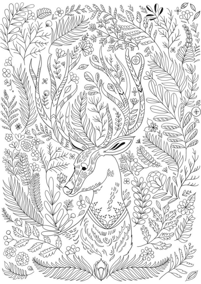 85 best Антистресс images on Pinterest Butterflies, Coloring pages - new deer tracks coloring pages