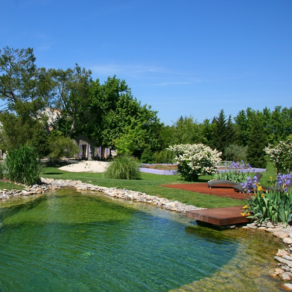 183 Best Spring Fed Natural Pond Images On Pinterest