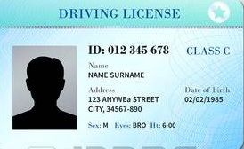 This utility helps you to schedule a driving test online  In