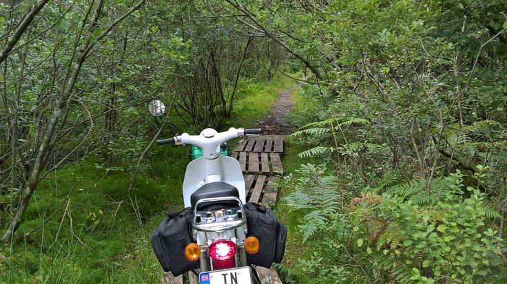 any bike can be an adventure bike!