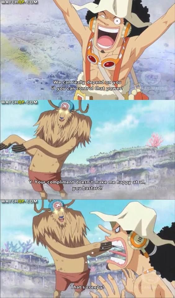 Usopp and Chopper / One piece.