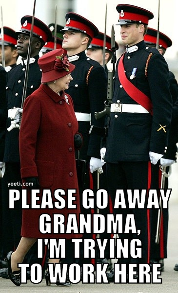 :): Queen Elizabeth, Prince Harry, Prince Williams, The Queen, British Royals, Funny Stuff, Smile, Life Humor, Royals Families