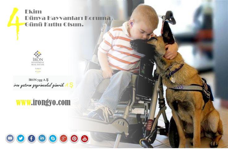 """4 Ekim Dünya Hayvanları Koruma Günü Kutlu Olsun.  İROn yatırım gayri menkul gümrük A.Ş AİLESİ 4 Ekim Dünya Hayvanları Koruma Günü'nde, doğayı bizimle paylaşan sevimli dostların yaşama haklarının güvence altına alınması ve mutluluklarının devamının sağlanması hususunda herkesi sorumlu davranmaya davet ediyoruz."""" www.irongyo.com İRON ygg A.Ş"""