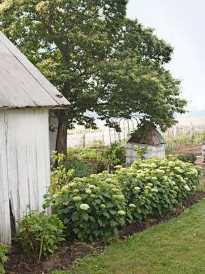 Farmhouse Decorating Ideas - Rustic Farm Pictures - Country LivingDecor Ideas, Well House, Trellis Panels, Small Structures, Hydrangeas Enclosed, Decorating Ideas, Country Living, Herbs Gardens, Painting White