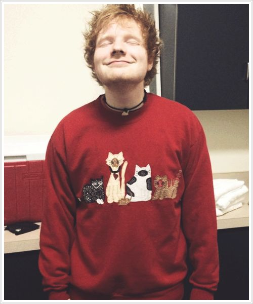 This is a picture of Ed Sheeran in a cat sweater. Can we all just take a minute to appreciate the beauty that is this picture? Ed being adorable as usual