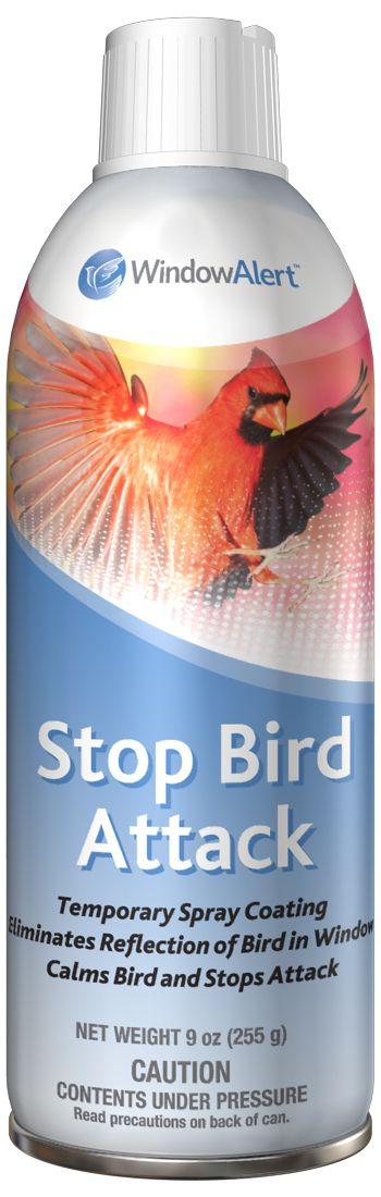 Stop birds from hitting your windows. Stop Bird Attack - WindowAlert