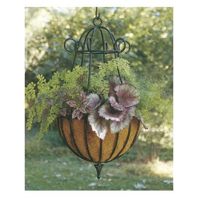 Decorative - 14 Diameter Peacock Hanging Planter & Liner Set