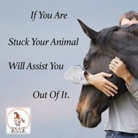 If You Are Stuck Your Animal Will Assit You Out Of It by Suzy Godsey on SoundCloud