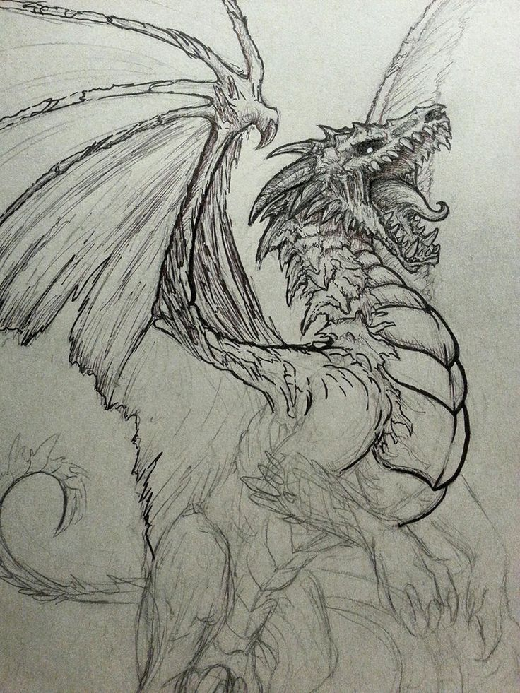 25 best ideas about dragon drawings on pinterest