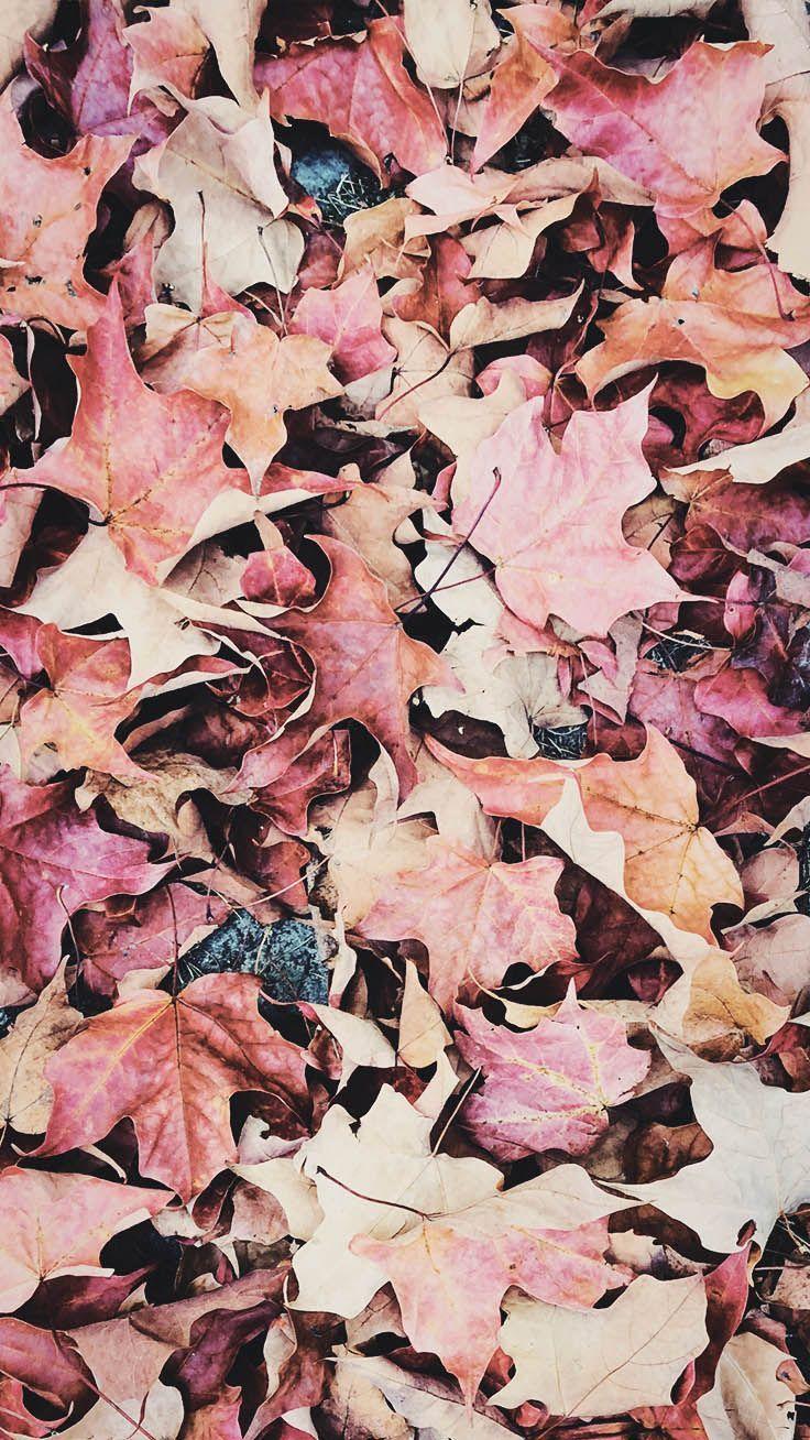 Cliquez ici pour l'image complète!15 Wunderschöne Happy Fall iPhone X Wallpapers – Merve Yıldız – Belinda💛