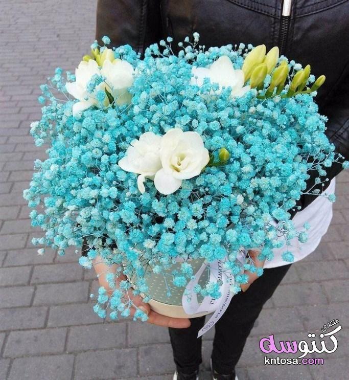 بوكيهات ورد باللون الفيروزى لون البحر في باقات الورود ورد تركواز لمحبى باقات ورد باللون الفيروزى Kntosa Com Flower Bouquet Wedding Bouquet Box Flowers Bouquet