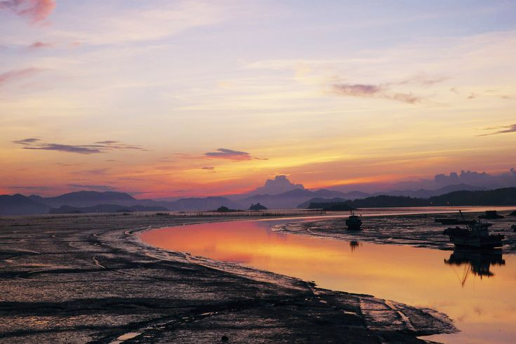 Korea's western coastline mudflat heaven
