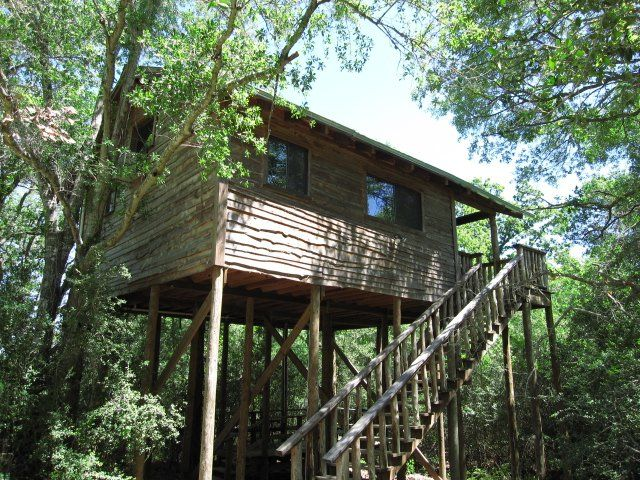 These 10 Unique Places To Stay In Texas Will Give You An Unforgettable Experience #9) Treehouse at Scenic Hill Vacations (Brenham)