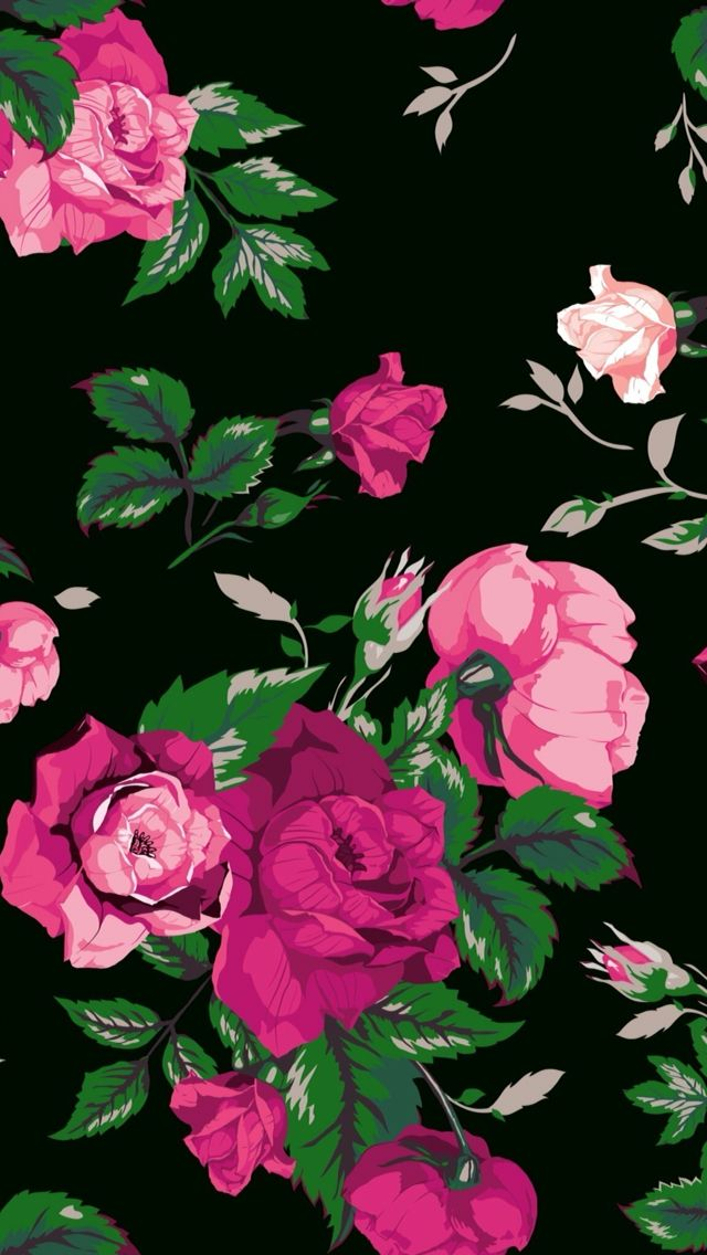 Wallpaper iphone in 2019 floral wallpaper iphone - Pink rose black background wallpaper ...