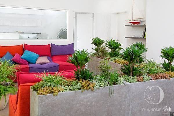 Настоящий зимний сад в гостиной, композиция из комнатных растений в уникальных кашпо из инновационного материала — ваш личный ботанический рай.