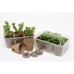 Mini Greenhouse kit includes 6 pots, green house, jiffy pellets and seeds too $10