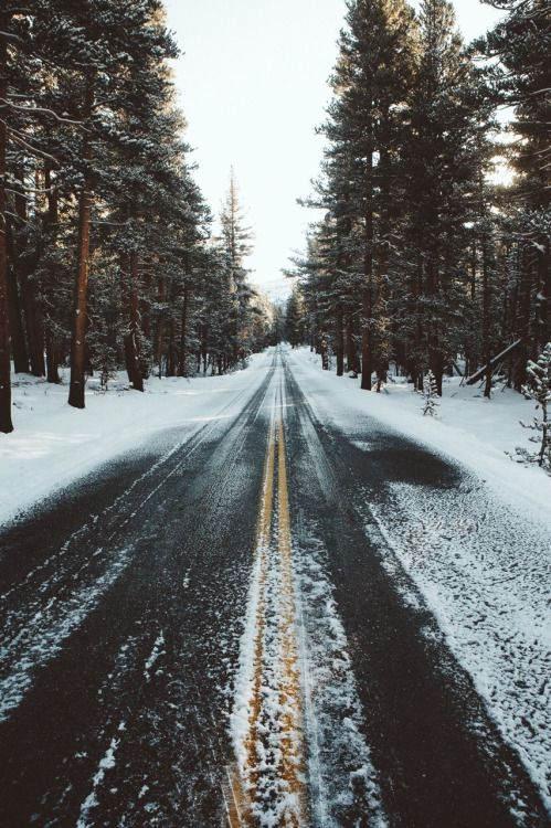 Fantasy Road Trip | Road Trip | Road | Road photo | on the road | the open road  snow | ice | pines | chasing the light | drive | travel | wanderlust | mountains | adventure | landscape photography | Schomp MINI
