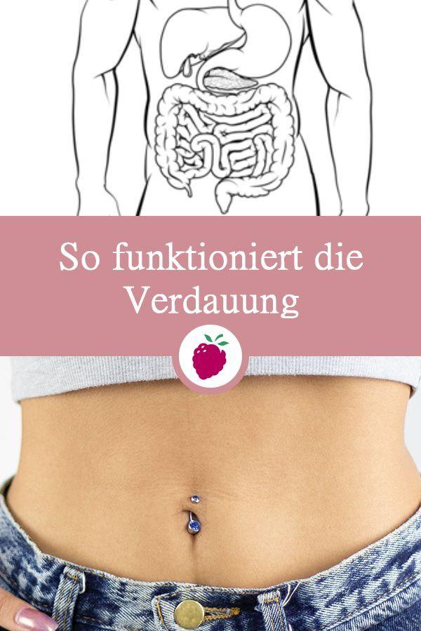 Wie man Darm und Taille schlank macht