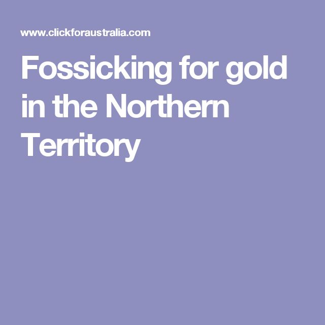 Fossicking for gold in the Northern Territory